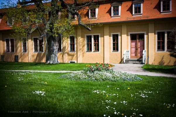 Schloss Ettersburg im Frühjahr